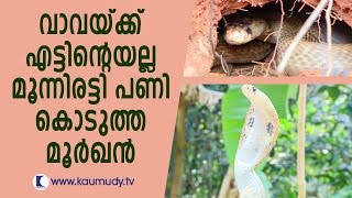 getlinkyoutube.com-Hostile Cobra traps Man | Vava Suresh | Snake Master | Kaumudy TV