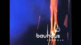 getlinkyoutube.com-Bauhaus - Crowds