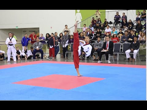 Team-M @ 2014 USA Nationals Taekwondo Championship