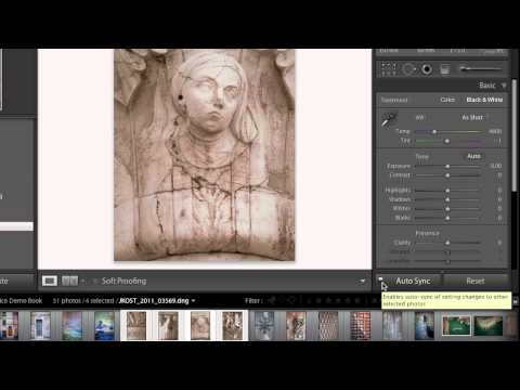 Advanced Book Features in Lightroom 4