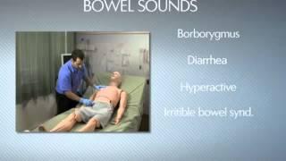 getlinkyoutube.com-HAL Bowel Sounds