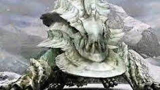 getlinkyoutube.com-【モンハンX(クロス)】 極圏の支配者 ウカムルバス 4人実況プレイpart22