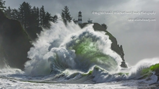 getlinkyoutube.com-The Beautiful Wild Pacific Northwest (HD)