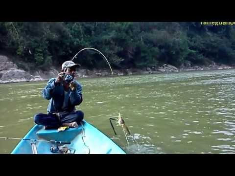Mancing Udang Galah Di Lubuk Petai Sungai Kuala Gris Kelantan(Pok Lat)