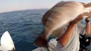 getlinkyoutube.com-Μεγαλα ομορφα ψαρια