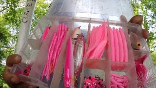 getlinkyoutube.com-The Pink Challenge: Catching Fish on Pink Lures! (Norristown, PA)