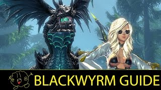 getlinkyoutube.com-[Blade and Soul] Guide: Blackwyrm (Blade Master Tanking)
