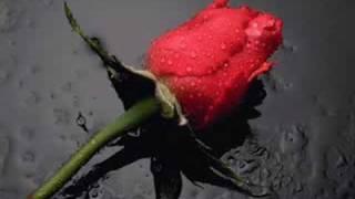 getlinkyoutube.com-من اجمل الاناشيد واعذبها...بصوت اكثرمن رائع....
