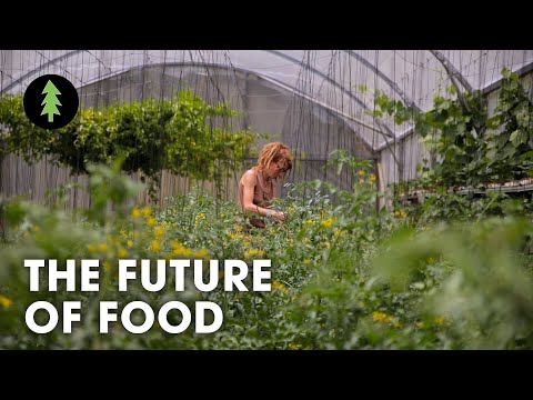 Organic Innovation Sustainable Farming is the Future of Agriculture