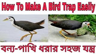 || বন্য পাখি ধরার সহজ যন্ত্র Ll How To Make A Bird Trap Easily Ll