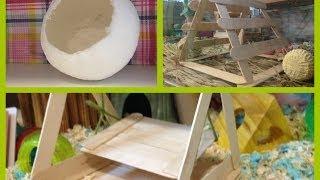 getlinkyoutube.com-DIY toys for your hamsters