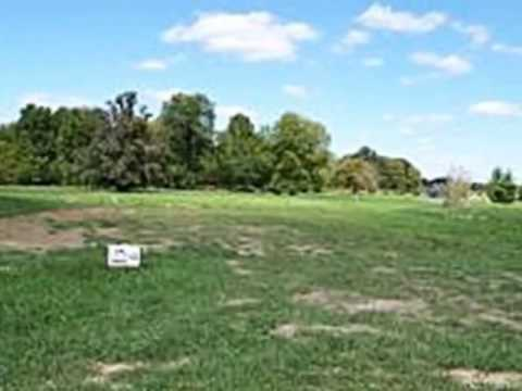 Homes for Sale - 5549 S Woods Manor Dr Lot 103 Smithton IL 62285 - Douglas Payne