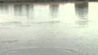 getlinkyoutube.com-タイ 釣り バラマンディー 悪魔と契約