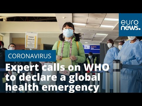 France 24:Expert calls on WHO to delcare coronavirus a global health emergency