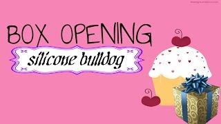getlinkyoutube.com-Box opening my custom silicone bulldog
