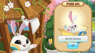 getlinkyoutube.com-Animal Jam SPRING BUNNY Membership (Gift from AJHQ) ft. proven