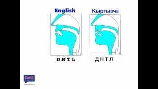 getlinkyoutube.com-D, N, T, L   Англис тилини акцентсиз сүйлөөнүн секрети