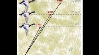 getlinkyoutube.com-How to lead ducks, Shooting ducks 101