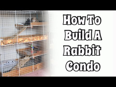 BudgetBunny: Building Your Own Rabbit Condo
