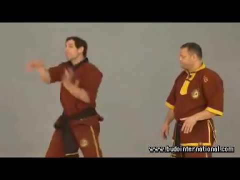 Weng Chun Kung Fu Vol.2 Andreas Hoffman
