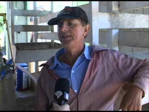 Salas de ordenha em Guarani das Missões - Programa Rio Grande Rural