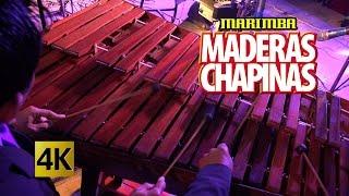 getlinkyoutube.com-Marimba Maderas Chapinas - Concierto Orgullo Chapin / Calidad 4K