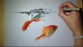 getlinkyoutube.com-Fun drawing Goldfish in Water !