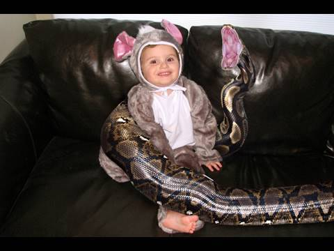 Boy's Pet 20-Foot Python Snake Eats Him