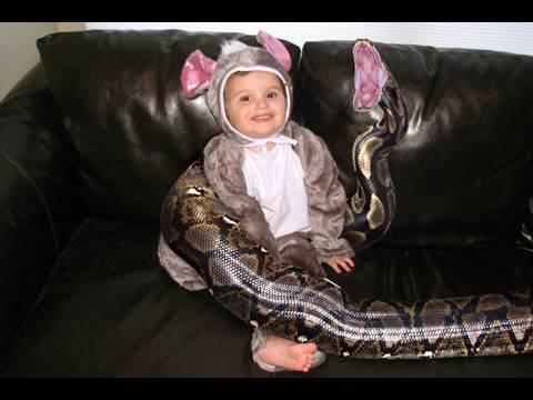 Boy's Pet 20-Foot Python Snake Eats Him