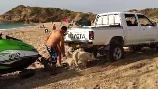getlinkyoutube.com-toyota hilux 4x4 off road חוף פלמחים טויוטה הילוקס