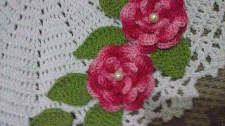 getlinkyoutube.com-Flor Para Aplicação