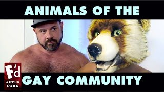 Gay Animal Labels And Fursona Stereotypes | Fd After Dark