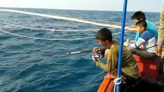 getlinkyoutube.com-ตกปลาแชกำแสมสาร(ไต่เต่า