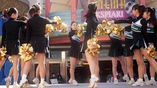 getlinkyoutube.com-Cheerleading 慶應義塾大学ソングリーダーズUNICORNSチア①Mickey Mouse Club March (Disney)
