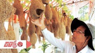 getlinkyoutube.com-Lạ mắt bộ sưu tầm tổ chim dồng dộc | VTC