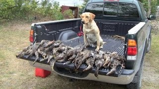 getlinkyoutube.com-Opening Day Duck Hunting 2012
