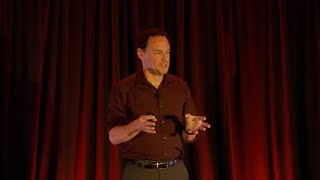 Dr. David Diamond - 'An Assessment of Cardiovascular Risks of a Low Carbohydrate, High Fat Diet'
