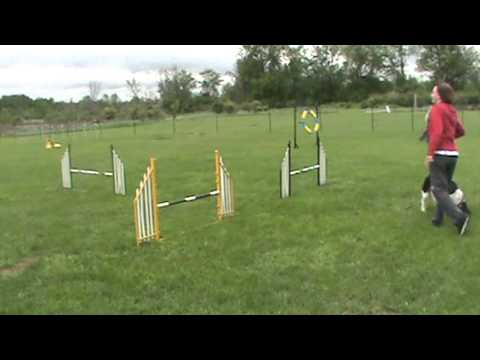 phoenix'''agility training May 21