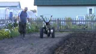 getlinkyoutube.com-Вспашка мотоблоком Зубр с передним опорным колесом
