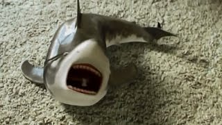 getlinkyoutube.com-Shark toy playing again