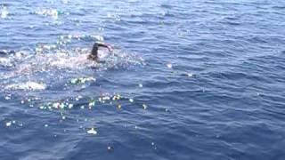 getlinkyoutube.com-Marathon swim 30km Kalamata-Koroni 2009