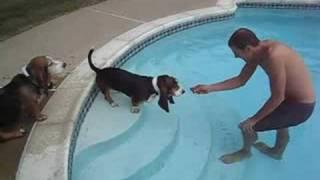 The girls swim lessons 1