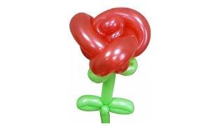 getlinkyoutube.com-Роза из воздушных шаров