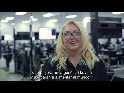 1 millión de unidades de Sexcel™ Sexed Genetics
