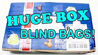 LPS - HUGE BOX OF BLIND BAGS! Fan Mail Video Part 13