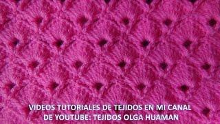 getlinkyoutube.com-punto abanico tejido a crochet