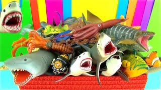 getlinkyoutube.com-Shark Toys Collection Whales Fish Turtles Toys for Kids Tiburón Tubarão Jaws