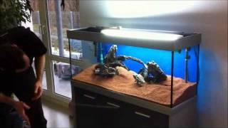 getlinkyoutube.com-Aquarieneinrichtung mit Oliver Knott