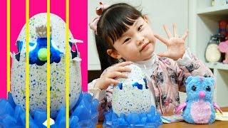 [다큐5일]라임의 해치멀스 알 부화시키기❤︎ 뽀로로와 타요 서프라이즈에그 장난감 놀이 LimeTube & Toy 라임튜브
