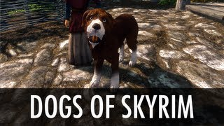 getlinkyoutube.com-Skyrim Mod Spotlight: Dogs of Skyrim